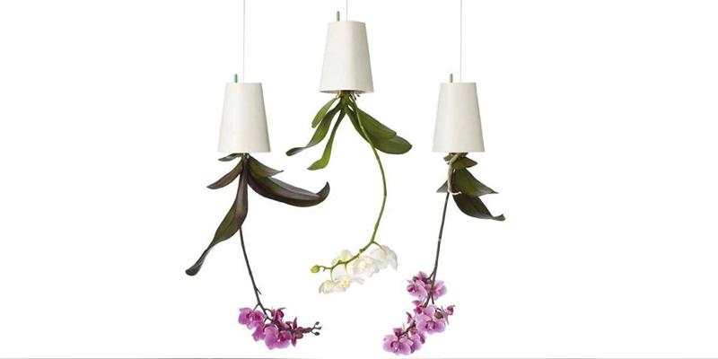 fleurs-suspendues-pot-de-fleur-à-l'envers-fete-des-meres