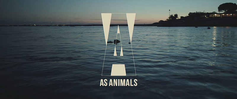 as-animals-cover
